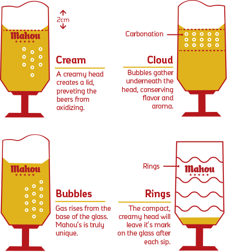Anatomy of a Draft Beer